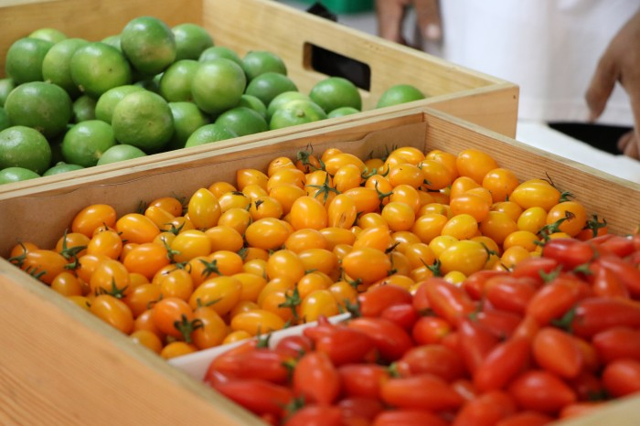 farmer market2